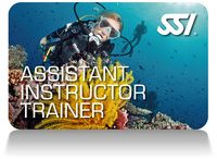 ASSISTANT INSTRUCTOR TRAINER